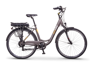 Ecobike City L grey 28 16 Ah